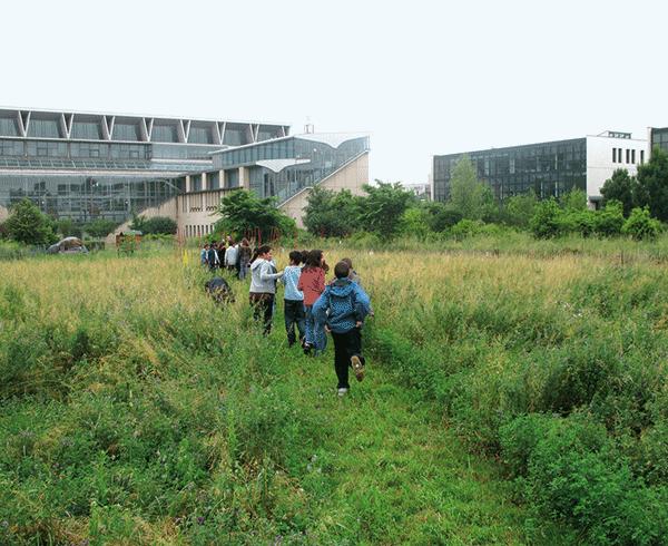 Les enfants et le jardin
